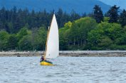 "Oarlock and Sail club members participating in the ""Heritage Harbour Covid Classic"" on English Bay"